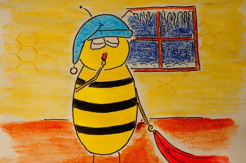 Halten Bienen Winterschlaf Imkerei Christof Wenzel